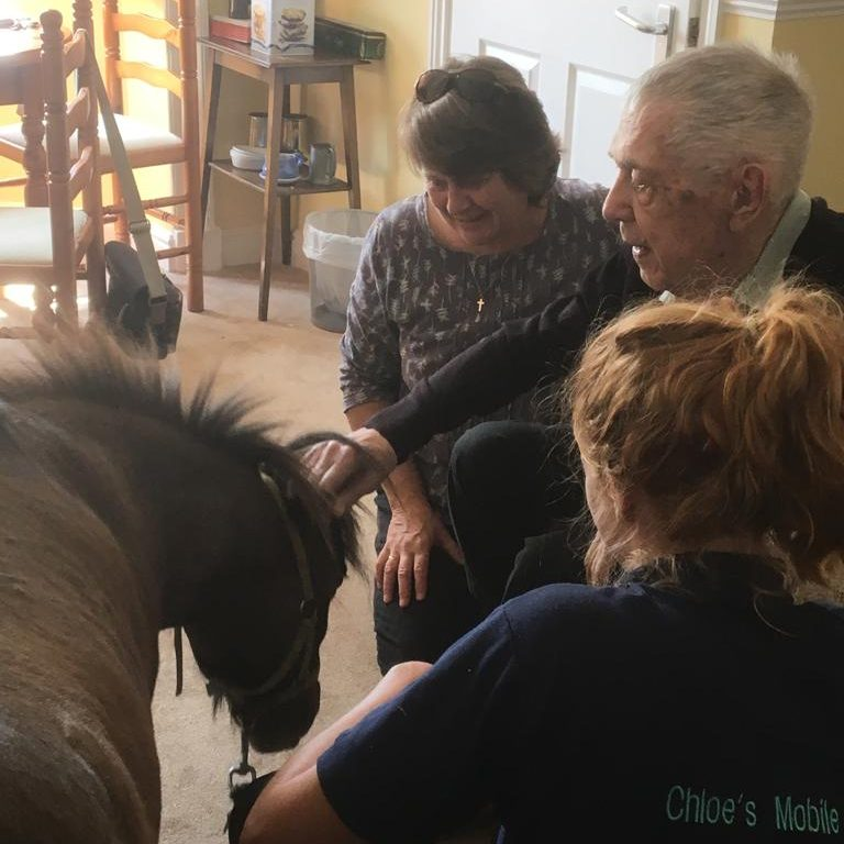 Wally enjoying a visit from Wilber the pony!